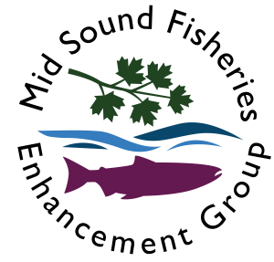 Mid Sound Fisheries Enhancement Group logo